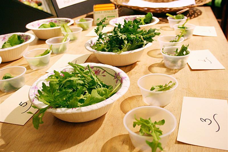 Leafy Greens Trials