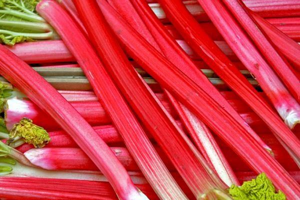 Crimson Cherry Rhubarb